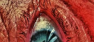 Mit den Augen des Bösen