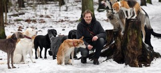 Dogwalker: Hunde-Erziehung als Rudelerlebnis