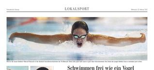 schwimmer.pdf
