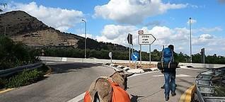 Willi und der Esel wandern durch Israel