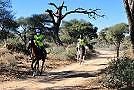 Distanzreiten: Virginie Atger beim Okahandja-Ritt in Namibia