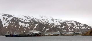 Das weiße Gold der Beringsee