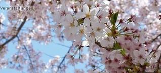 Japan: Zahntechnik zwischen Tradition und Moderne