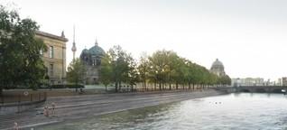 Berliner Visionen - Kopfsprung in die Spree am Stadtschloss