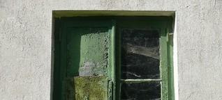 Fenster putzen mit Zeitungspapier - FAZ, Süddeutsche oder ZEIT?
