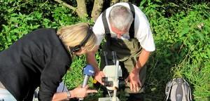 Die Durchblicker: Das Liebesleben der Flussperlmuschel