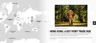 torial Blog | Schritt für Schritt zur Webreportage: StoryMap
