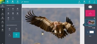torial Blog | Schritt für Schritt zur Webreportage: Genially