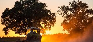 Reihe zur Bio-Landwirtschaft: In der Größe liegt die Zukunft