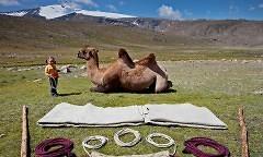 Familienreise: Als Nomaden durch die Mongolei