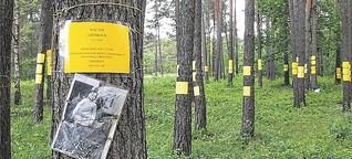 Im Wald der Toten