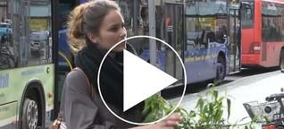 Mit einer Veganerin auf dem Offenburger Wochenmarkt