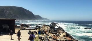 Surfurlaub in Südafrika: Warum du unbedingt nach Jeffreys Bay musst