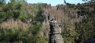 Tradition contra Sicherheit - Kletterer streiten über Sicherungsringe