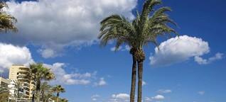 Andalusien: Die schönsten Küstenabschnitte   FORUM - Das Wochenmagazin