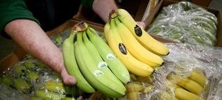 Banano para Alemania, precariedad para Ecuador