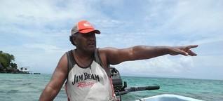 Fidschi Inseln: Der erste Hai