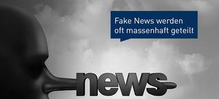 Was sind Fake News und wie kann man sie erkennen?