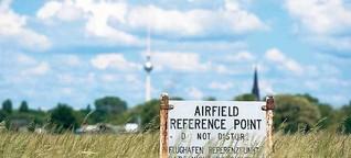 Ohne die Feldlerche würde das Tempelhofer Feld zum Tempelhofer Wald