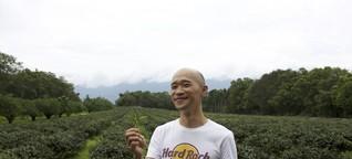 NZZ Folio: Tee ist nicht immer vegan