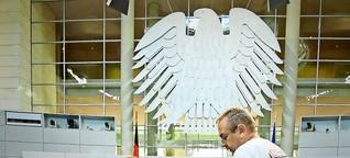 """Die AfD im Bundestag: Wie legitim ist eine """"Lex AfD""""?"""