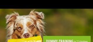 Dummytraining für Hunde: So geht's!