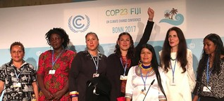To combat climate change, increase women's participation | DW Environment | DW | 20.11.2017