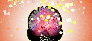 Daten aus dem Gehirn müssen geschützt werden, fordern Neurobiologen