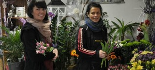 Sternberg: Blumen bringen jetzt schon den Frühling | svz.de