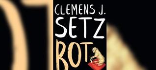 Bot. Gespräch ohne Autor: Experiment von Clemens J. Setz