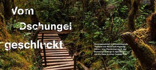 Lufthansa Exclusive: Vom Dschungel geschluckt