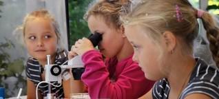 Im Vivarium erforschen Kinder die heimische Wassertierwelt