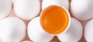 500 Millionen Eier gegen die Grippe
