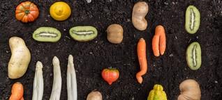 Krummes Gemüse auf dem Vormarsch   FOODBARN