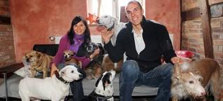Mit Hilfe von Peta - Teresa Enke kämpft für WM-Hunde