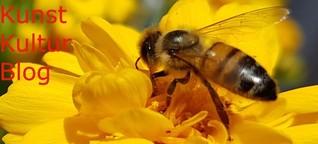 NABU Aktion Insektensommer