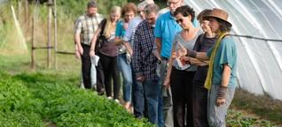 """Besser essen: Zu Besuch im """"solidarischen Garten"""""""