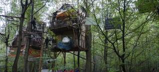 """Räumung im Hambacher Forst: """"Wir brauchen eine Denkpause"""""""