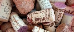 Wein richtig lagern: Tipps für Genießer