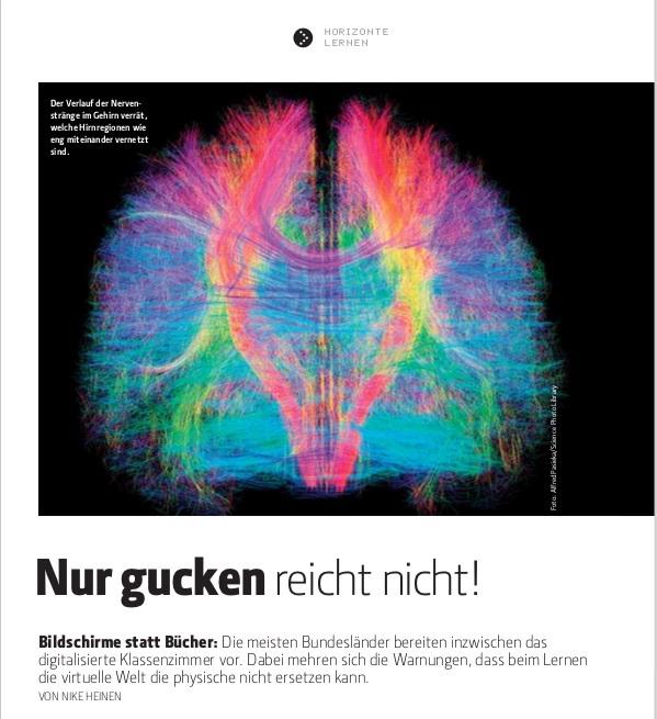 Wie Bildschirme das Gehirn verändern