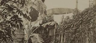 Städte, Landschaften und Naturschauspiele Wilhelm Reiß' Südamerika-Exp