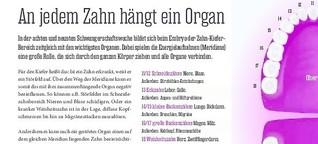 PINNWAND / Hamburger Abendblatt: An jedem Zahn hängt ein Organ