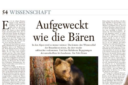 Weckruf für die Alpenbären