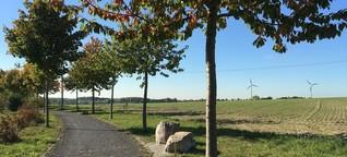 Goldene Wanderung durch den Sonsbecker Herbst