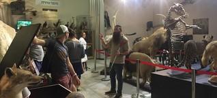 Gottes Tierreich in Israel: Biblisches Naturkundemuseum