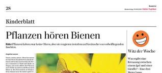 Pflanzen hören Bienen