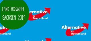 AfD Sachsen: Das Wahlprogramm 2019 im Überblick!