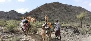 """UN wollen """"Verwüstung"""" stoppen: Wenn der Boden nutzlos wird"""