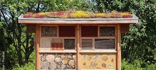 Herzlich Willkommen im Insektenhotel! - KOMMUNALtopinform