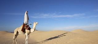 Wüste statt Küste: Zu Tunesiens Oasen in der Sahara